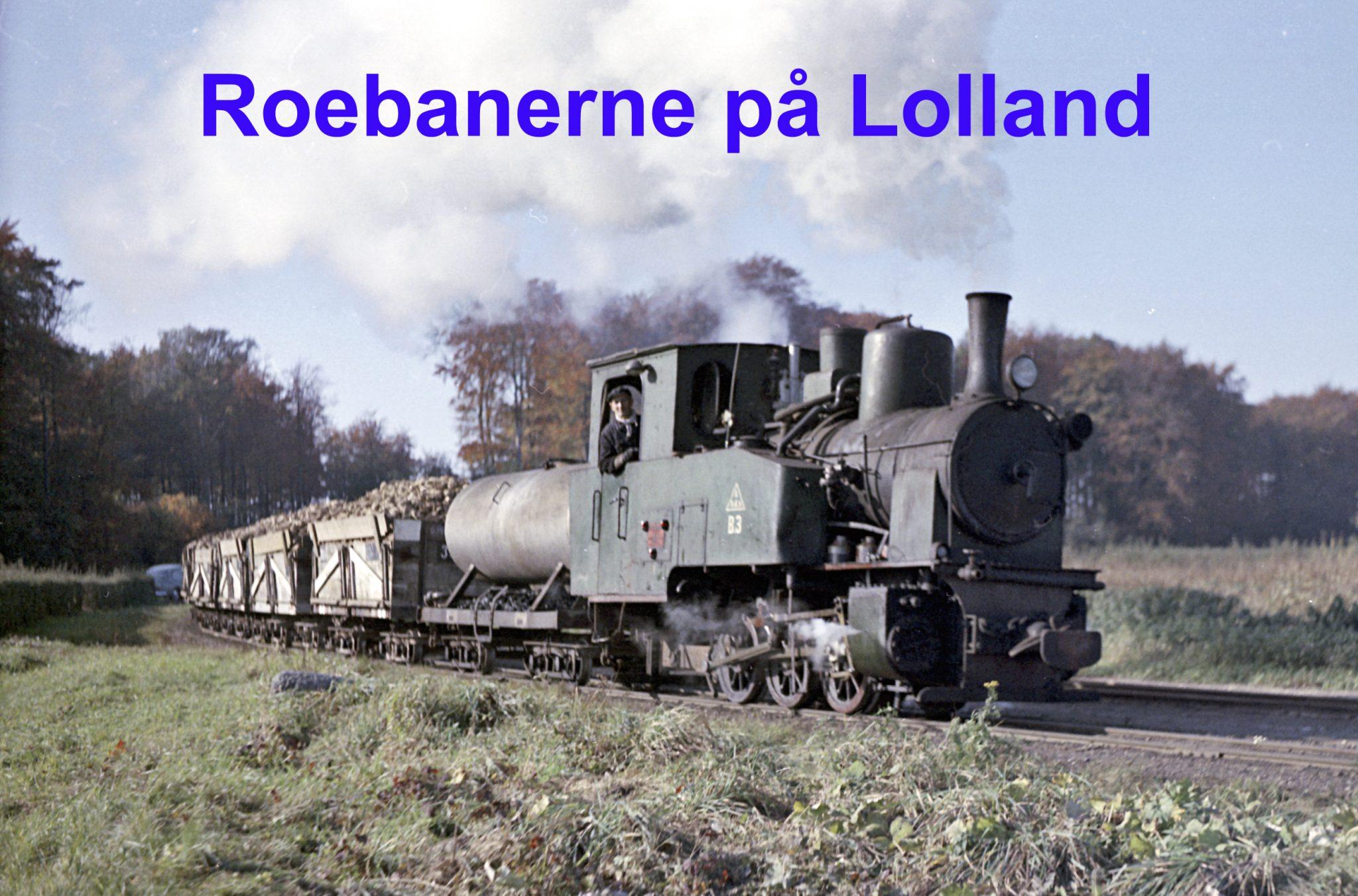 Foredrag om roebanerne på Lolland udskydes til foråret