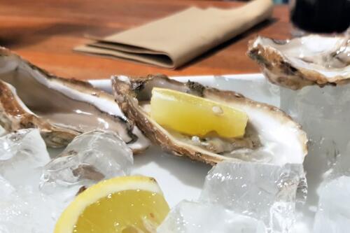 Friske østers