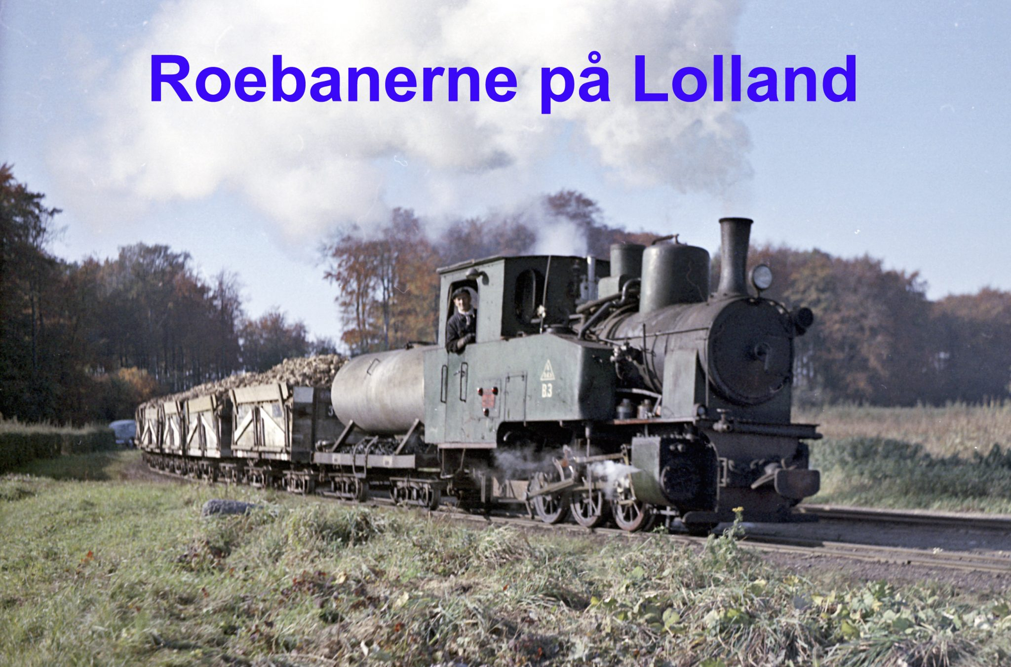 Roebanerne på Lolland / NY DATO